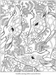 Giraffe Coloring Pages Colouring Adult Detailed Advanced Printable