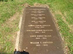 "Mary Polly Priscilla ""Mary Polly"" Fowler Johnston (1842-1910) - Find A  Grave Memorial"