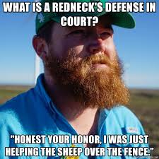 What Is A Redneck S Defense In Court Honest Your Honor I Was Just Helping The Sheep Over The Fence Redneck Thinking Meme Generator