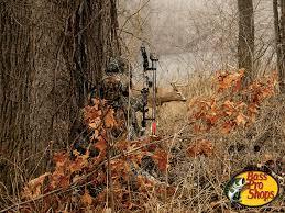 bow hunting wallpaper 1024x768