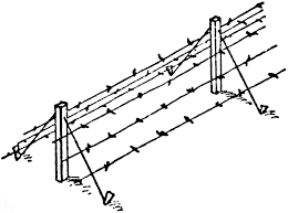 63 Reference Of Barbed Wire Fence Cartoon Pictures In 2020 Barbed Wire Barbed Wire Fencing Wire Fence