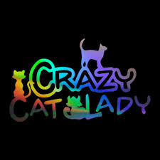 Crazy Ferret Lady Ferrets Weasel Sign Car Window Wall Vinyl Decal Sticker For Sale Online Ebay