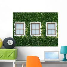 Amazon Com Wallmonkeys Windows And Ivy Wall Decal Peel And Stick Graphic Wm53986 36 In W X 27 In H Home Kitchen