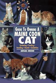 Guide to Owning a Maine Coon Cat: Grooming, Feeding, Handling, Health,  Exhibition by Abigail Greene
