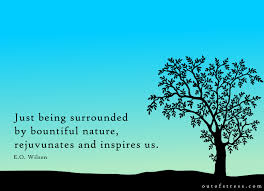 profound quotes on the healing power of nature