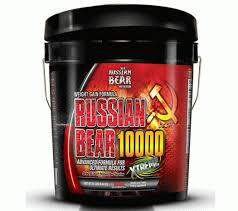 russian bear 1000 weight gainer