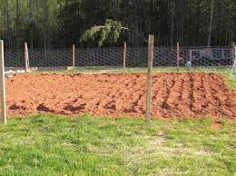 30 Clever And Inexpensive Garden Fencing Ideas New Life On A Homestead Homesteading Blog