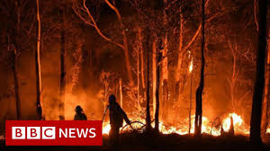 Australia fires: Rain brings relief but ...
