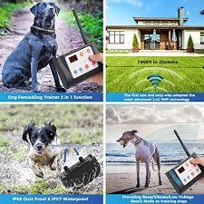 Best Wireless Dog Fence 2020 Roundup Review Heel Boy Heel