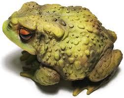muse design frog toad sculptures garden