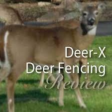 Dalen Deer X Deer Fencing Product Review