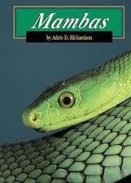 Mambas Snakes, Adele Richardson. 0736821376)