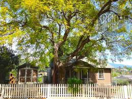 For Rent Cozy Charming Home W Detached Garage And Patio Large Lot Real Estate Theeastsiderla Com
