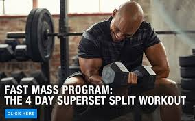 muscle strength supplement