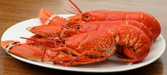 A lesson in cooking Crab and Lobster ...