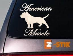 Purchase American Bully Pit Bull Pitbull Dog Sticker Car Decal Window Laptop 6 Amstaff Motorcycle In Scottsville Kentucky Us For Us 2 99