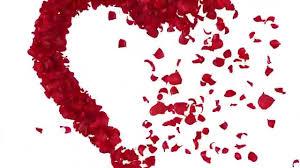 قلب حب مع ورد عبر عن حبك بصور بها معانى كثيرة فنجان قهوة