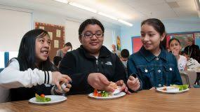 nutrition education in us s