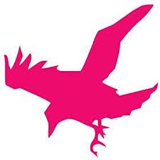Amazon Com Crow Raven Jackdaw Vinyl Decal Sticker 3 75 X 3 75 Hot Pink Home Improvement