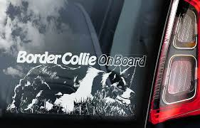 Border Collie Car Sticker Sheepdog Window Decal Bumper Sign Dog Pet Gift V02 Ebay