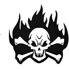 Vampire Flame Skull Crossbones Vinyl Decal Sticker