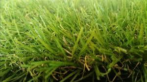 pet zen garden synthetic grass rubber