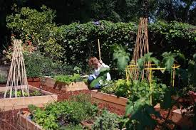vegetable garden design services