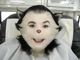cat prosthetics makeup 2020 ideas