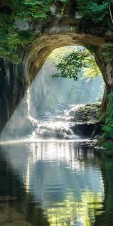 nature wild nature landscape