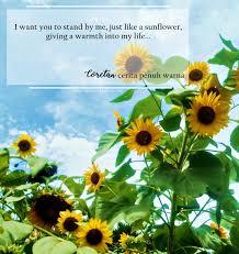stand by me kebun bunga matahari kediri coretan warna langkah