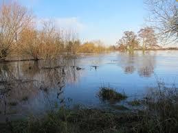 Flooding 2 Hilary Phillips | Wild Oxfordshire