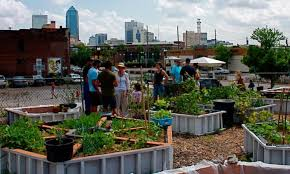 urban agriculture projects food tank