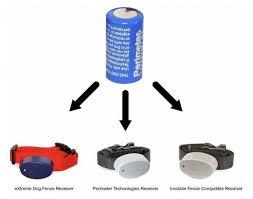 Extreme Dog Fence 6 Volt Collar Battery Extreme Electric Dog Fence 2020 Diy Kits