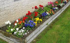 flower garden ideas home and garden