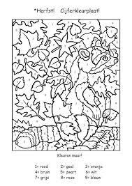 Onderwijs En Zo Voort 1594 Thema Eekhoorns