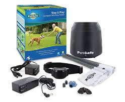 The Best Electric Dog Fences Review In 2020 Pet Side