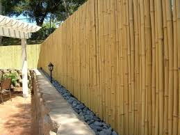 Cheap Fence Ideas To Embellish Your Garden And Your Home Diy Garden Fence Fence Design Bamboo Fence