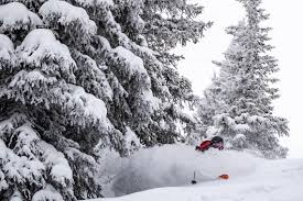 The stoke was high and the snow was deep for Liberty Skis' Athlete ...