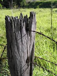 Fence Post Wood Farm Old Wire Old Fences Rustic Fence Fence Post