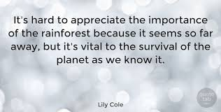 lily cole it s hard to appreciate the importance of the