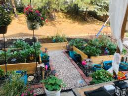 diy backyard raised garden beds with