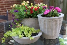 simple diy concrete flower pots