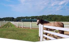 Home Centaur