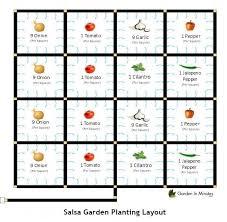 salsa garden layout how to grow a