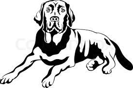 Dusty Taylor Obituary | Clock Timeless Pets
