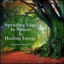 quotes about nature healing quotes
