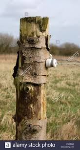 Post Insulator High Resolution Stock Photography And Images Alamy