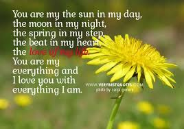 """love quote of the day unknown author """"you are my the sun in my"""