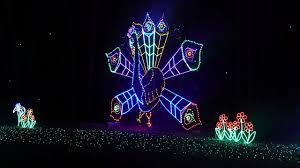 christmas spirit with saluda shoals