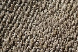 pet urine stains from a sisal rug